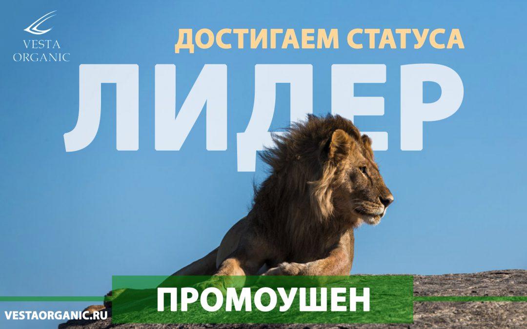 Промоушен «Достигаем статуса Лидер»